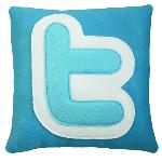 Cojín Twitter