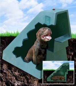 Caseta de perros para el verano 1