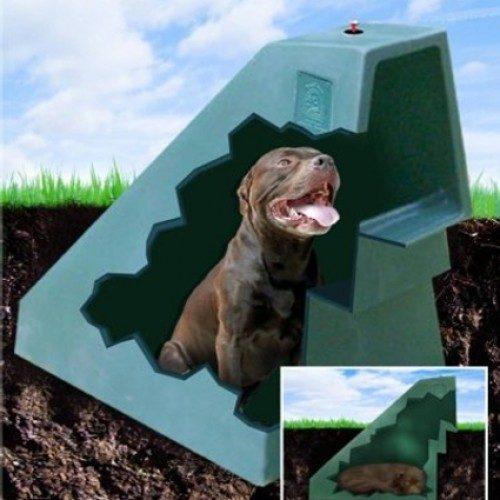 Caseta de perros para el verano