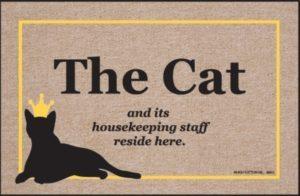 El gato es el Rey