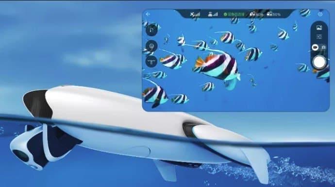 Vídeo en tiempo real Power Dolphin