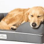 Cama de espuma viscoelástica para perros medianos